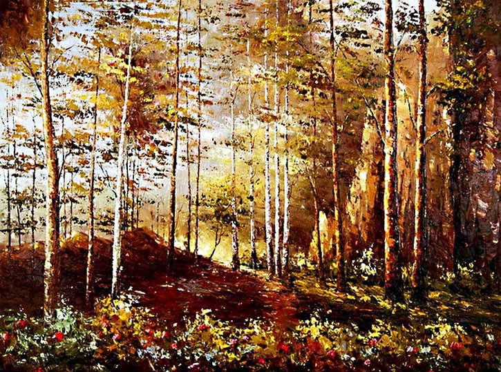 paisajes-bosques-5